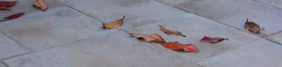 pavimentos exteriores - interiores Antiquus